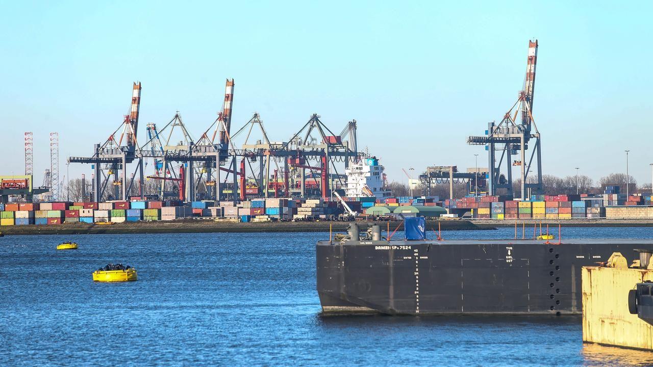requisitos para exportar en Argentina